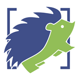 Hedgehogs logo